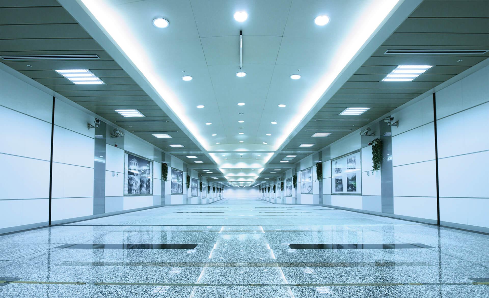Produkt und Fachkompetenz Akkordeon Lichttechnik